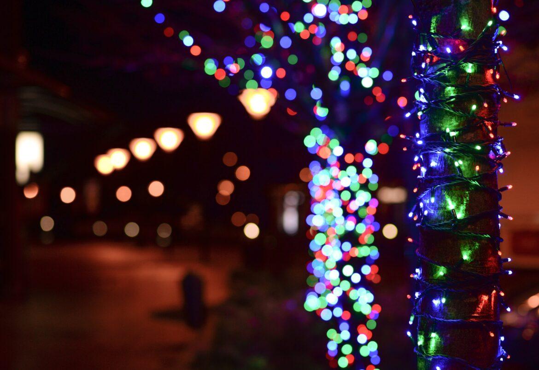 Oświetlamy ogród na święta